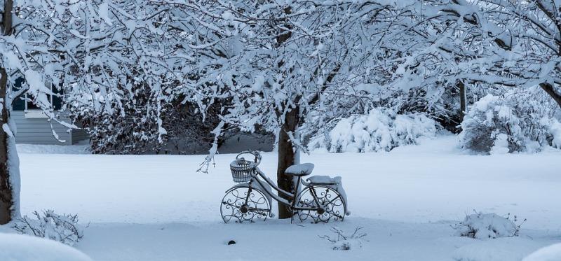 Snowstorm-Snow-Winter-Frost-Cold-Frozen-3221516.jpg